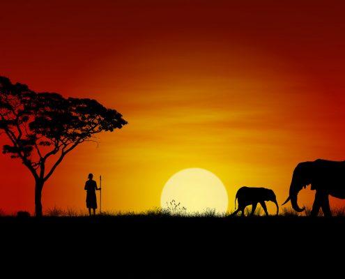 Sonnenuntergang mit Elefanten und einem Massai Krieger - Villa-Kuishi - Diani Beach - Kenia - Ihr exklusives Ferienhaus unter der Sonne Ostafrikas