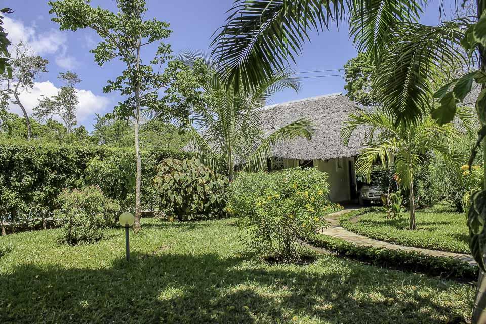 Garten - Villa-Kuishi - Diani Beach - Kenia - Ihr exklusives Ferienhaus unter der Sonne Ostafrikas